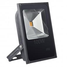 Прожектор светодиодный SLFL LED 100W 4200K IP66