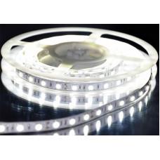 Герметичная светодиодная лента SMD 5050 30LED/m IP65 12V White
