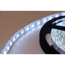 Герметичная светодиодная лента SMD 5050 60LED/m IP65 24V White
